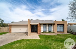 Picture of 10 Budawang Place, Tatton NSW 2650