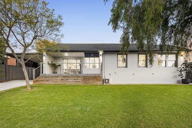 Picture of 11 Lomond Avenue, SEACOMBE HEIGHTS SA 5047