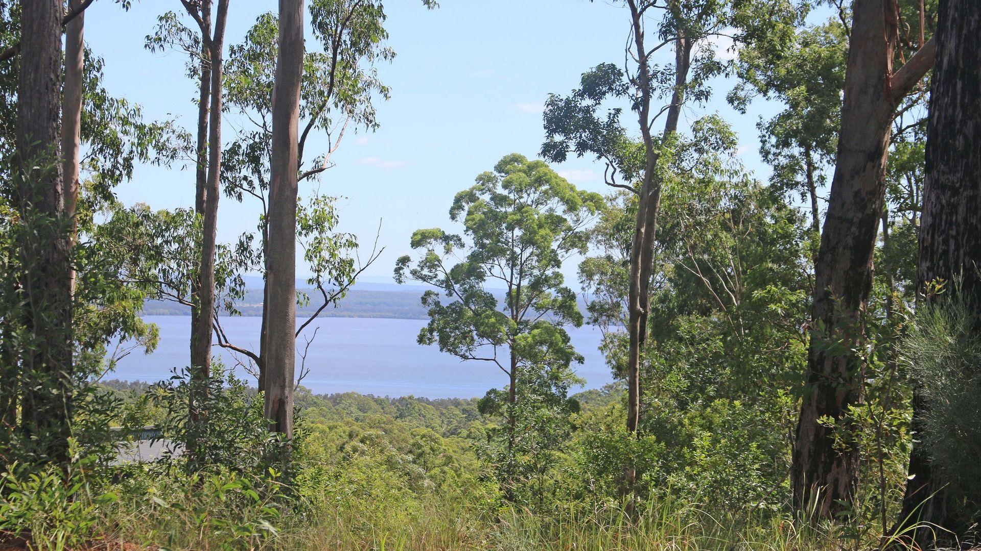 Lot/65 Crisp Drive, Ashby NSW 2463, Image 1