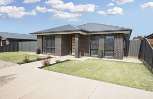 Picture of 23 Tower Avenue, Swan Hill VIC 3585