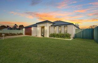 Picture of 14 Illawarra Terrace, Vasse WA 6280