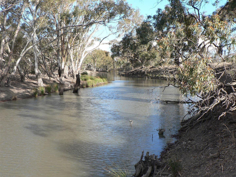 """Whiporie Park"" 1537ha - 3793ac, Conargo NSW 2710, Image 0"