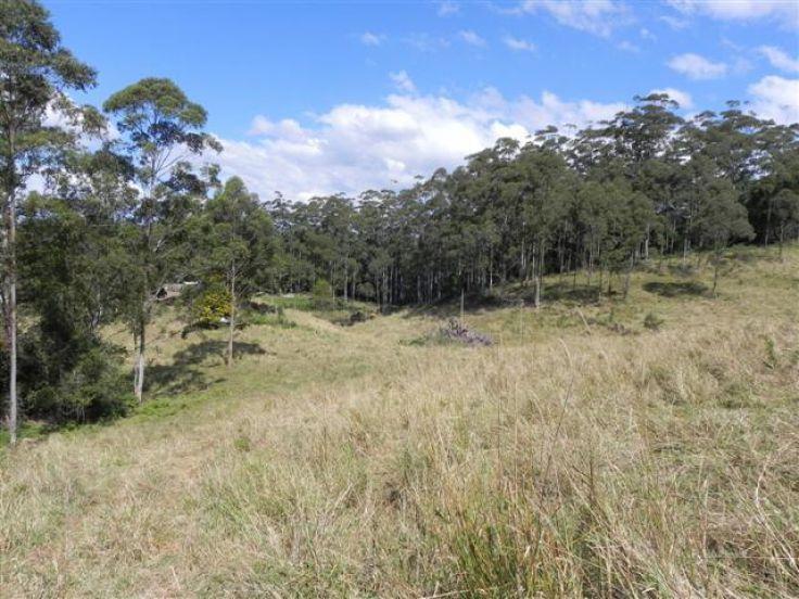 Bellthorpe QLD 4514, Image 1