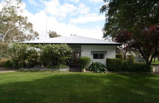 Picture of 1214 Wrattonbully Road, Wrattonbully SA 5271