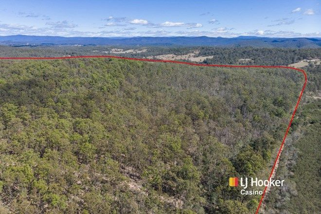 Picture of Lot 71 Sugarloaf Road, MALLANGANEE NSW 2469