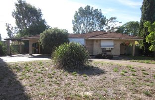 Picture of 33 Lefroy Street, Moora WA 6510