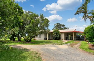 Picture of 1 Pine Creek Road, Gordonvale QLD 4865