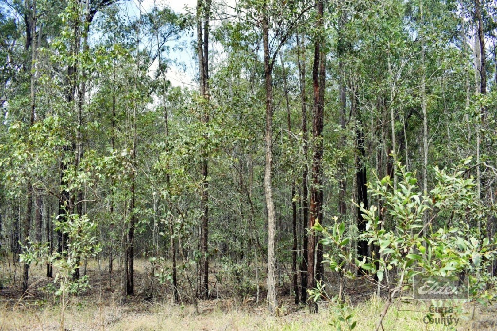 Lot 65 Brassington Road, Glenwood QLD 4570, Image 1