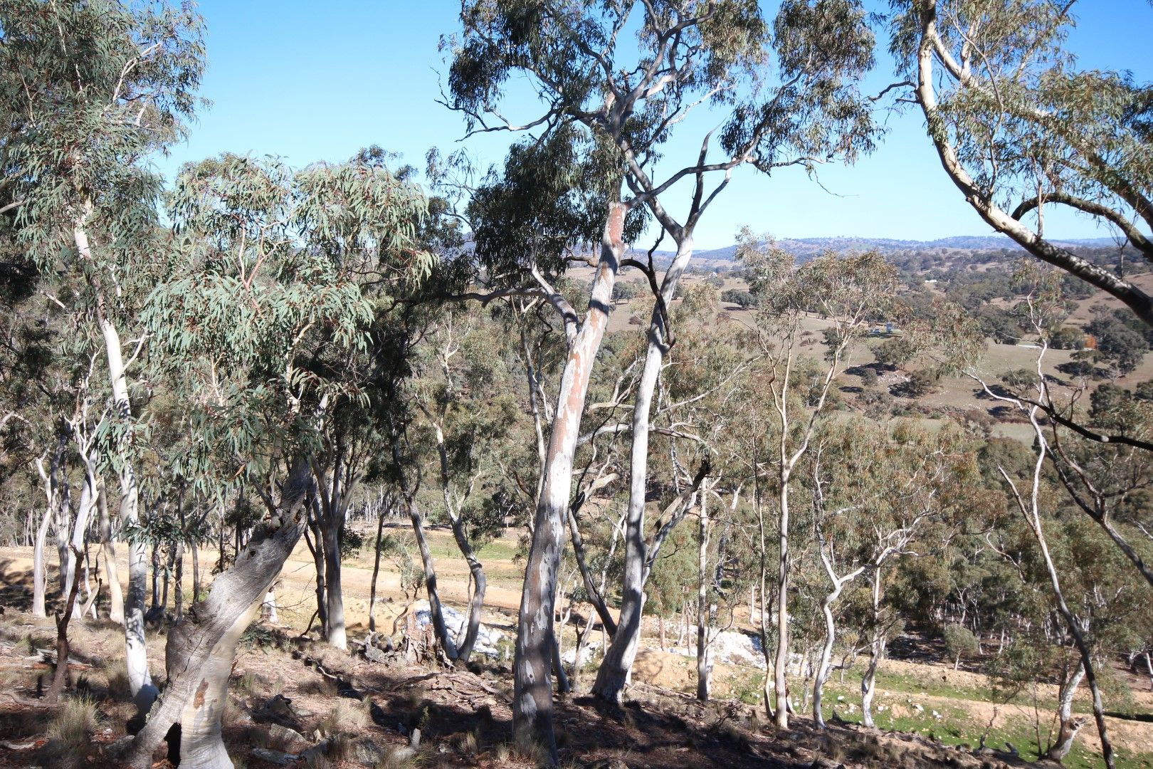 2902 Beaconsfield Road, Wisemans Creek NSW 2795, Image 1