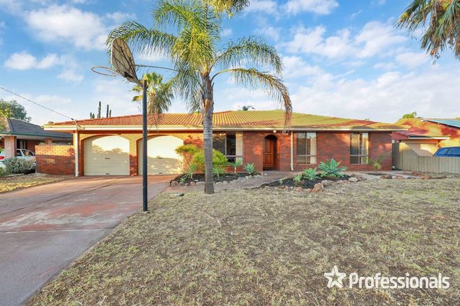 Picture of 12 Sanderling Drive, THORNLIE WA 6108