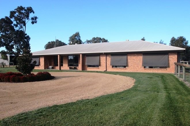 Picture of 299 Chapel Road, COBRAM VIC 3644