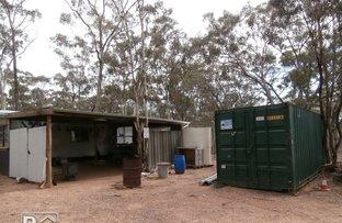 Picture of 211 Eddington-Tarnagulla Road, Waanyarra VIC 3551