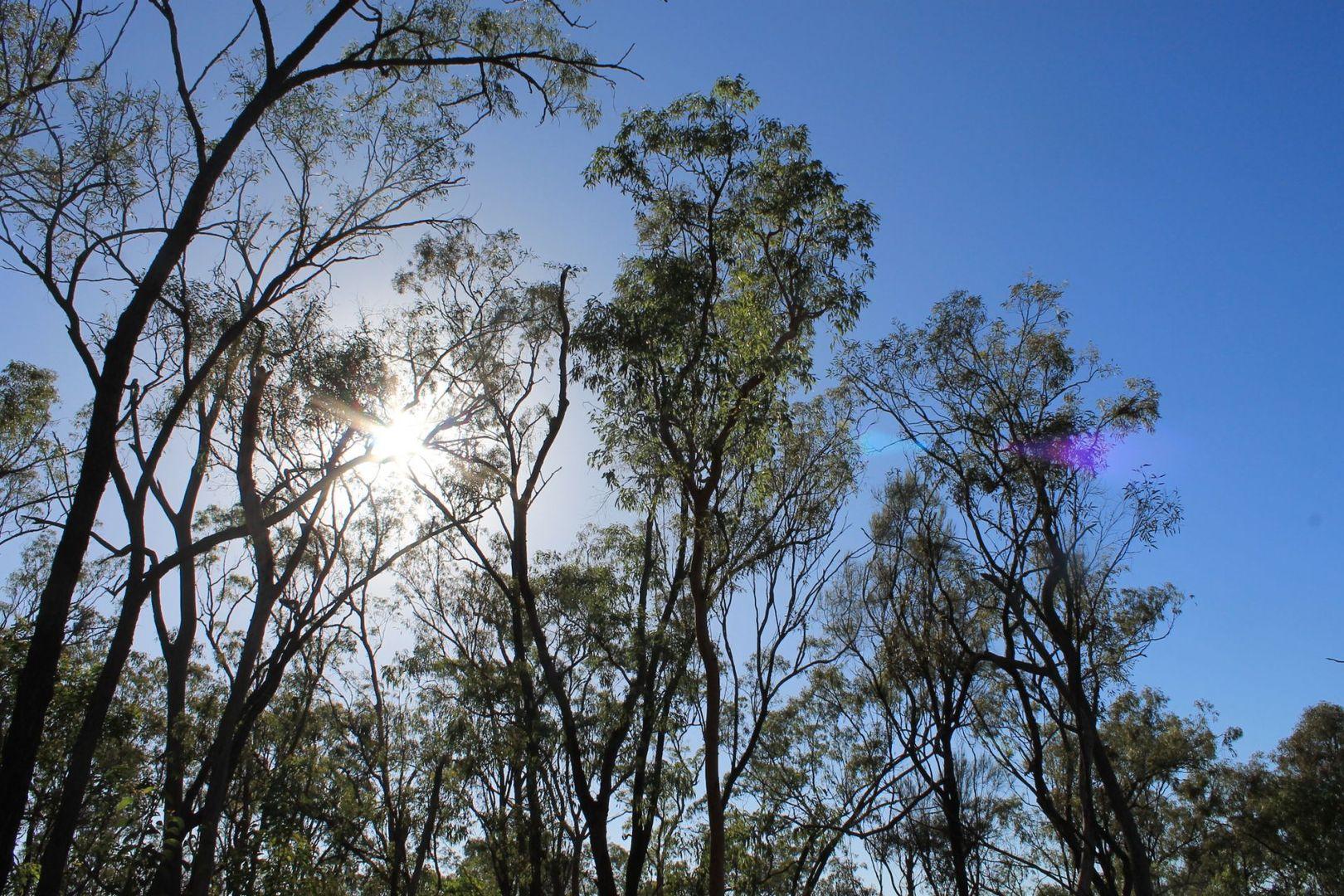 1461 Proston Boondooma Road, Coverty QLD 4613, Image 0