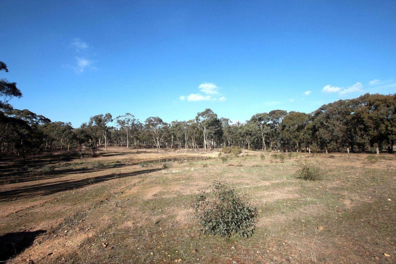 130 Eddington - Laanecoorie Road, Laanecoorie VIC 3463, Image 1