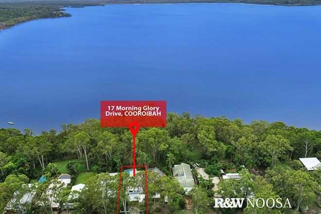 Picture of 17 Morning Glory Drive, COOROIBAH QLD 4565