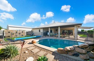 Picture of 27 Bamboo Crescent, Mount Louisa QLD 4814