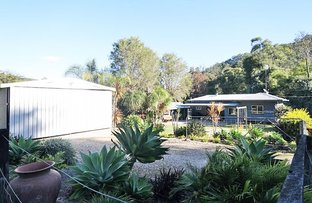 Picture of 1434 Numinbah Road, Chillingham NSW 2484
