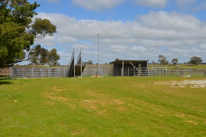 Picture of 1451 Broadview Road, PADTHAWAY SA 5271
