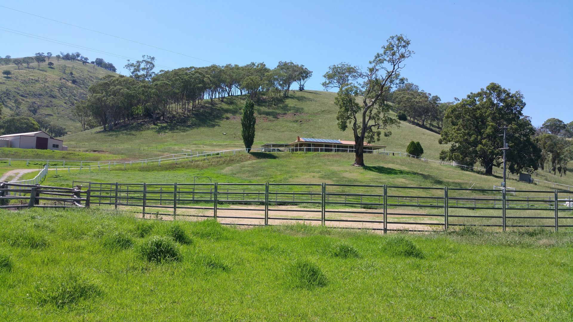 879 Duncans Creek Road, Woolomin NSW 2340, Image 1
