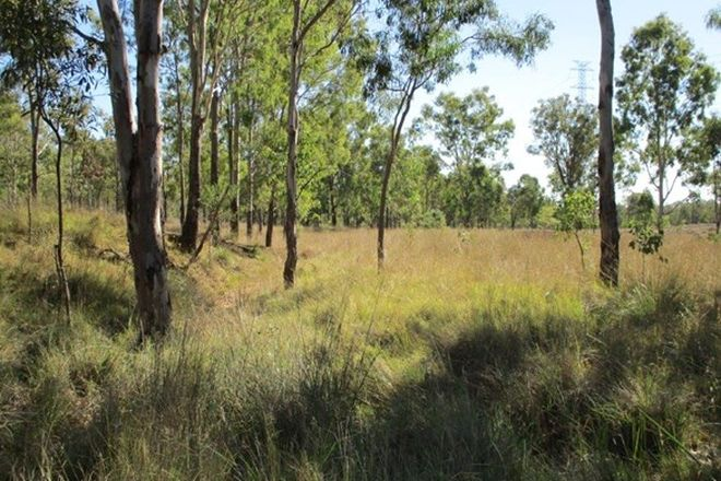 Picture of 1300 ACRES CATTLE BREEDING, DURONG QLD 4610