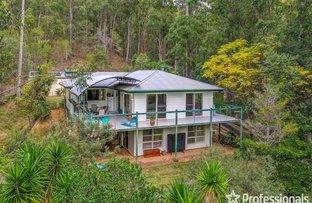 Picture of 81-89 Murray Grey Drive, Tamborine QLD 4270