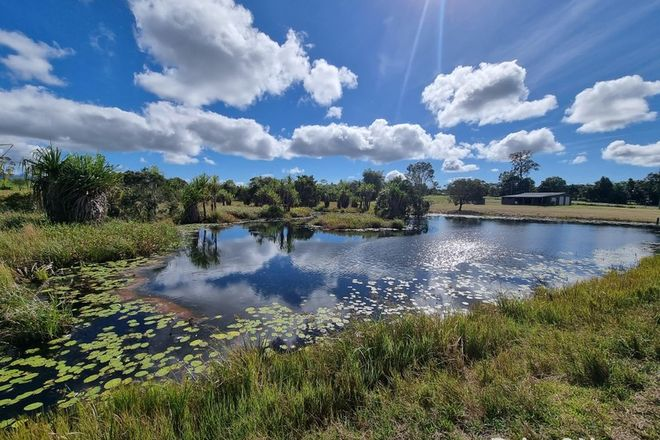 Picture of 96 Mary Jane Drive, JULATTEN QLD 4871