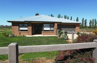 Picture of 376 Mywee Road, Strathmerton VIC 3641