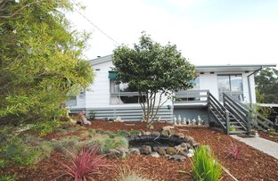Picture of 2 Eveline Court, Mirboo North VIC 3871
