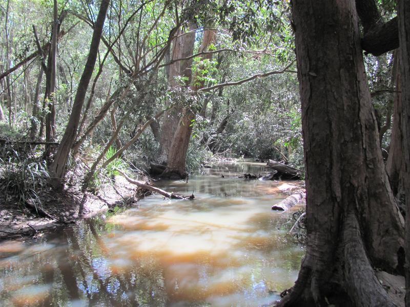 261 Mitchell Road, Mount Maria QLD 4674, Image 1