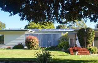 Picture of 24 Patrick Street, Dalby QLD 4405