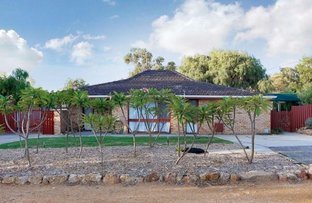 Picture of 13 Seabird Place, Craigie WA 6025