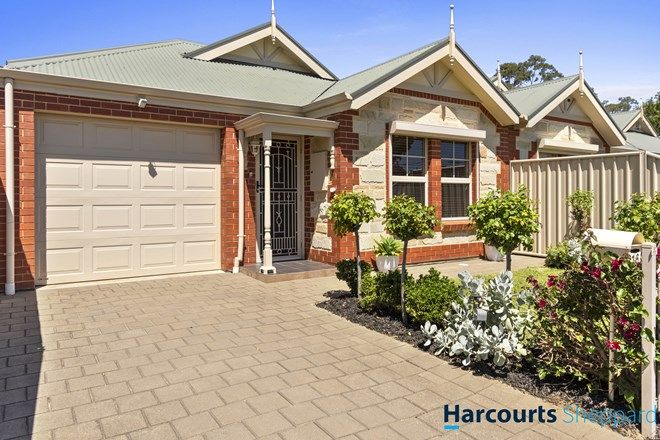 Picture of 16 Napier Street, RENOWN PARK SA 5008