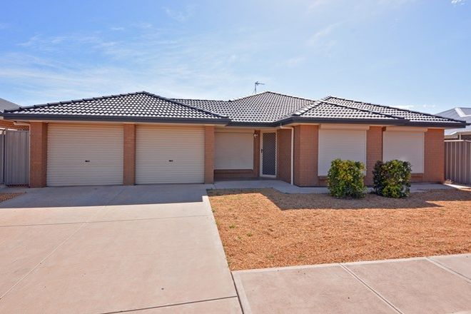 Picture of 24 Jensen Avenue, WHYALLA JENKINS SA 5609