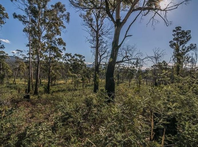 Lot 2 Lanes Tier Road, Ouse TAS 7140, Image 0