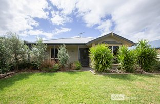 Picture of 55 GRIEVE AVENUE, Naracoorte SA 5271