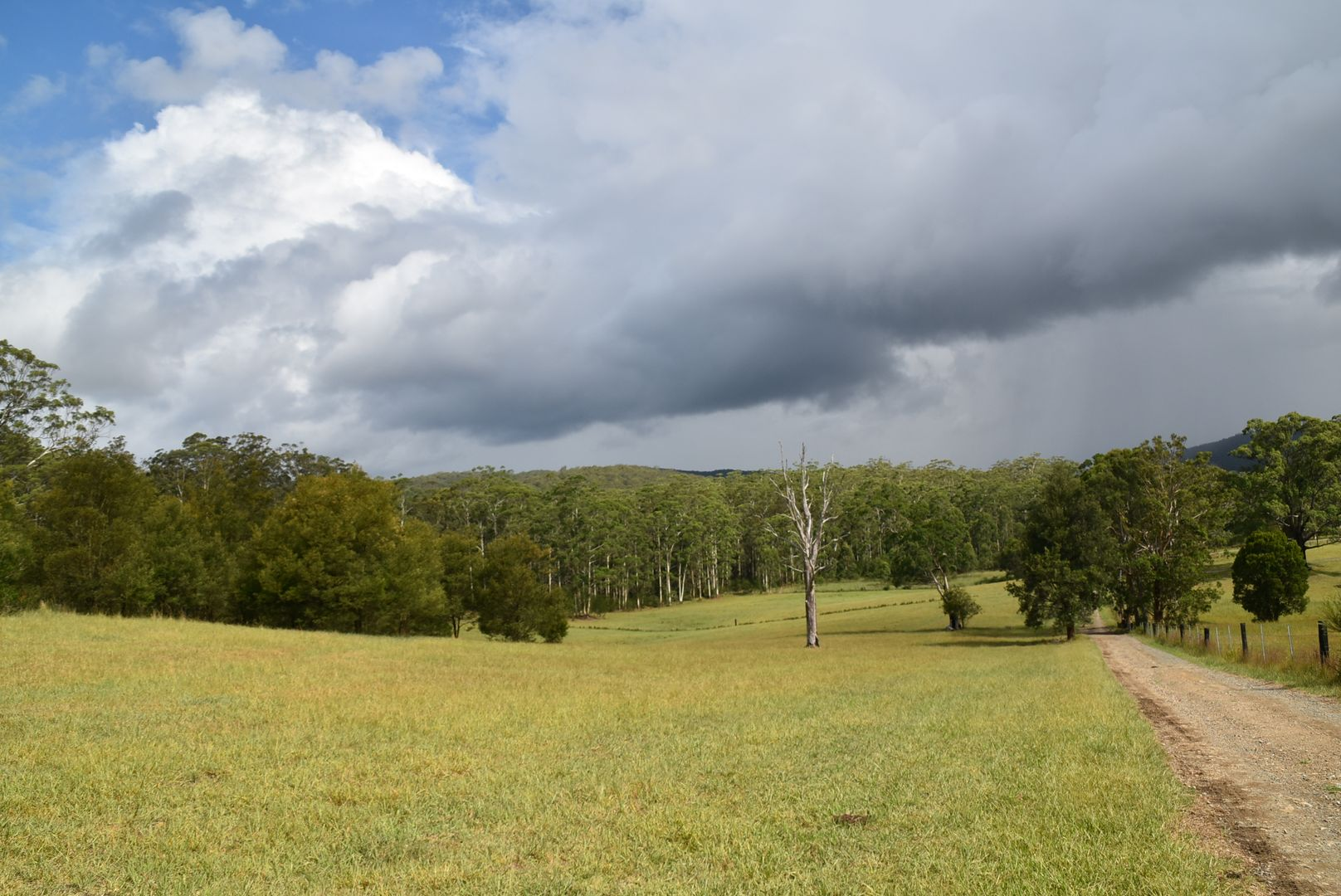 150 Kennedys Gap Road, Coolongolook NSW 2423, Image 2
