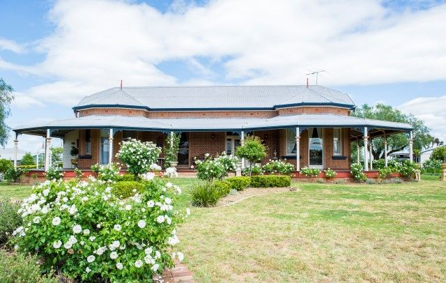 51 Forbes Street, Grenfell NSW 2810, Image 0