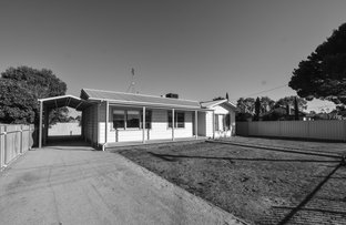 Picture of 5 McKinlay Street, Echuca VIC 3564