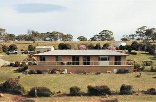 Picture of 302 Gunningrah Road, Bombala NSW 2632