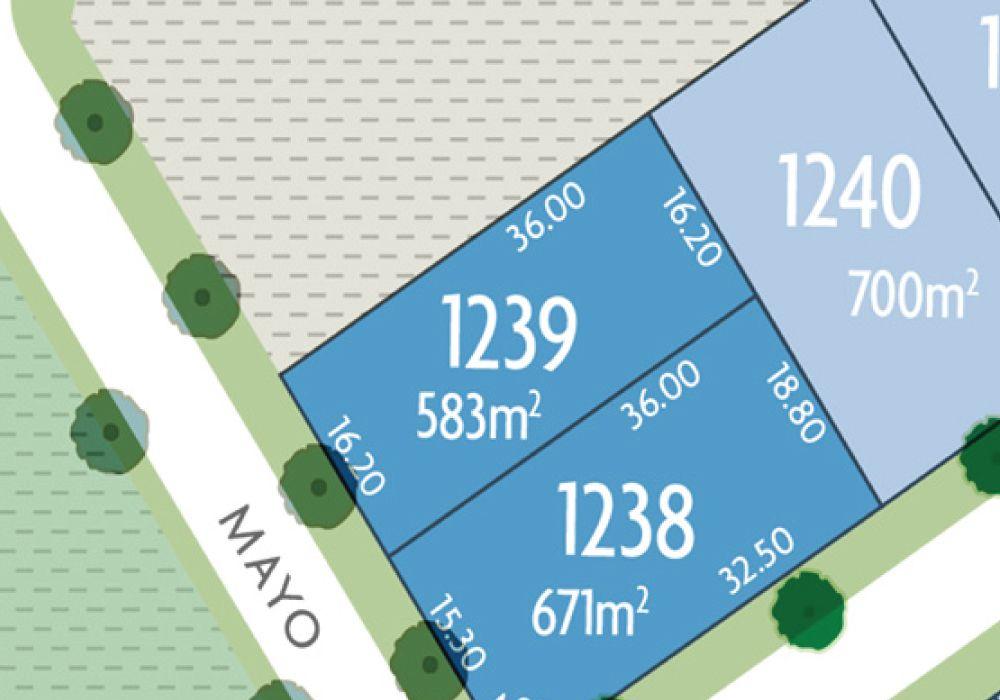 Lot 1239 Mayo Crescent, Chisholm NSW 2322, Image 0