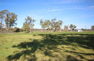 Picture of Lot 38 South Avenue, Bordertown SA 5268