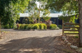 Picture of 915 River Road, Murchison North VIC 3610