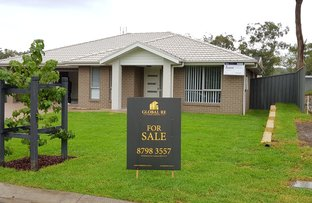 Picture of 24 Mountain Ash Drive, Cooranbong NSW 2265