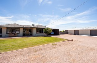 Picture of 41 Blight Road, Nelshaby SA 5540