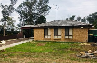 Picture of 11 Dilga Place, Erskine Park NSW 2759
