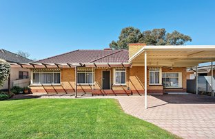 Picture of 59 Autumn Avenue, Lockleys SA 5032