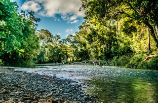 Picture of 520 Roses Road, Bellingen NSW 2454