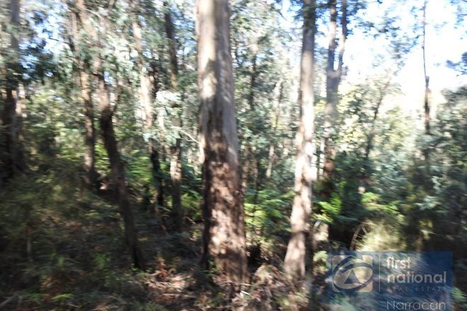 Picture of Lot 10 Happy Go Lucky Road, WALHALLA VIC 3825