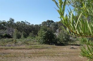 Picture of 201 West Boundary Road, Manjimup WA 6258