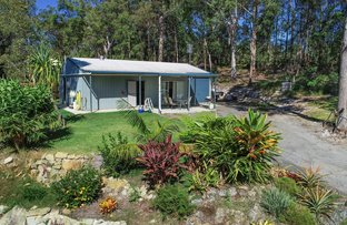 Picture of 32 Highlands Hill Rd, Maroochy River QLD 4561